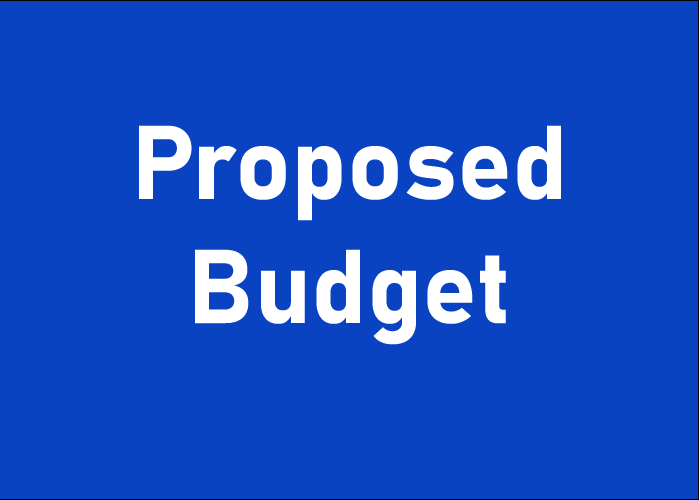 Proposed Budget for 20-21